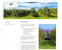 Zasnova, oblikovanje in izdelava spletnega mesta Agrosis